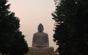 meditacion-budista